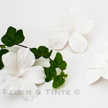 Feder & Tinte - Porzellan, Hibiskusblüte, weiss, Blüte